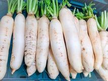 新鲜的萝卜在市场上 免版税库存图片
