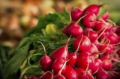新鲜的萝卜在生物市场上 免版税图库摄影