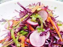 新鲜的萝卜 红叶卷心菜、青椒和红萝卜沙拉 库存照片