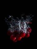 新鲜的葡萄在与气泡的水中 库存图片