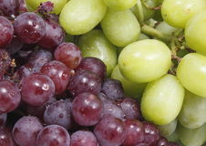 新鲜的葡萄果子 免版税库存照片