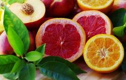 新鲜的葡萄柚和桔子与切片 图库摄影