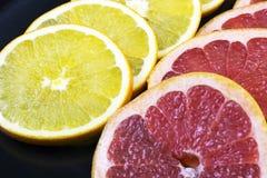新鲜的葡萄柚圆环  库存图片