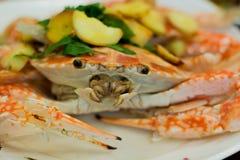 新鲜的蒸汽螃蟹 免版税库存照片