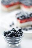 新鲜的蓝莓和蓝草莓饼 库存图片
