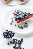 新鲜的蓝莓和蓝草莓饼 库存照片