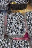 新鲜的蓝莓摘要果子五颜六色的样式纹理背景 图库摄影