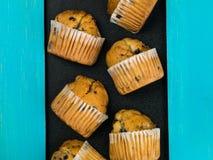 新鲜的蓝莓松饼的选择 库存照片