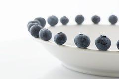 新鲜的蓝莓特写镜头 免版税库存图片