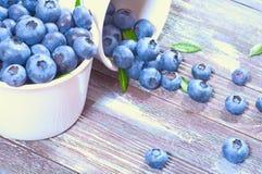 新鲜的蓝莓 图库摄影