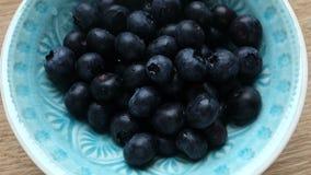 新鲜的蓝莓 股票录像