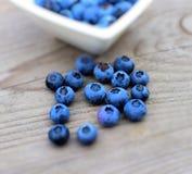 新鲜的蓝莓 库存照片