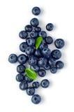 新鲜的蓝莓 免版税库存照片