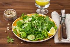 新鲜的蔬菜沙拉用各种各样的莴苣、黄瓜和向日葵种子 免版税库存照片