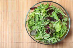 新鲜的蔬菜沙拉用菠菜、芝麻菜、rom aine和莴苣 库存照片