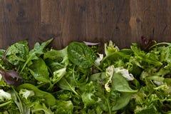 新鲜的蔬菜沙拉用菠菜、芝麻菜和莴苣 库存照片