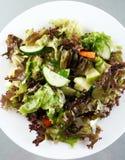 新鲜的蔬菜沙拉 免版税库存图片