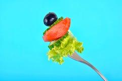 新鲜的蔬菜沙拉 免版税库存照片