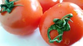 新鲜的蕃茄倾吐水能 股票视频