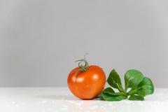 新鲜的蕃茄和沙拉 免版税库存图片