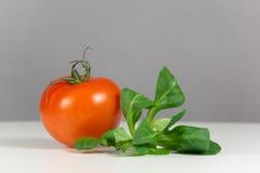 新鲜的蕃茄和沙拉 免版税库存照片
