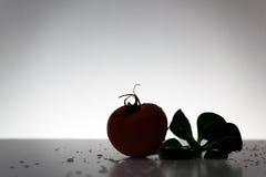 新鲜的蕃茄和沙拉 免版税图库摄影