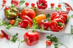 新鲜的蕃茄和胡椒在木盘子 图库摄影