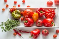新鲜的蕃茄和胡椒在木盘子 库存照片