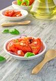 新鲜的蕃茄和葱沙拉 图库摄影