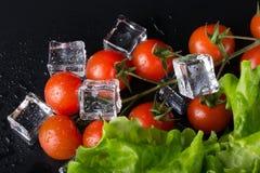 新鲜的蕃茄和蔬菜沙拉与湿冰块在黑backgro 图库摄影
