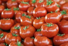 新鲜的蕃茄在市场上 库存照片