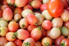 新鲜的蕃茄在市场上 免版税库存照片