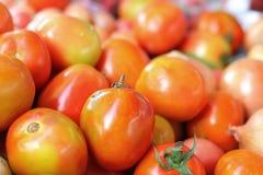 新鲜的蕃茄在市场上 免版税库存图片