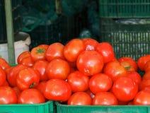 新鲜的蕃茄待售 图库摄影
