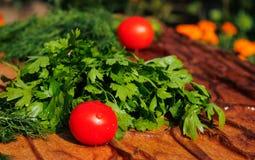 新鲜的蕃茄用荷兰芹和莳萝 免版税库存照片