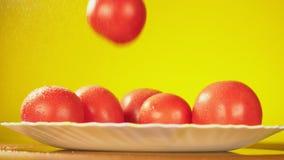 新鲜的蕃茄落与水滴在板材的 营养的概念 在黄色背景的孤立,减速 股票视频