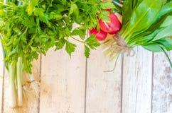 新鲜的薤萝卜野生蒜和荷兰芹 库存图片