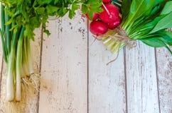 新鲜的薤萝卜野生蒜和荷兰芹 免版税库存照片