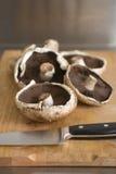 新鲜的蘑菇产物 免版税图库摄影