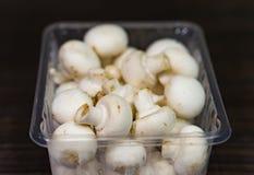 新鲜的蘑菇 库存图片