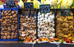 新鲜的蘑菇 免版税库存照片