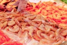 新鲜的虾在市场上 库存照片