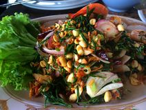 新鲜的虾沙拉泰国食物是普遍的 库存图片