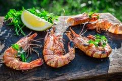 新鲜的虾用柠檬和荷兰芹在庭院里服务 免版税库存图片