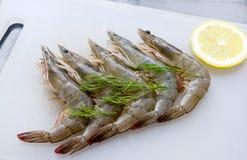 新鲜的虾用草本和柠檬 库存图片