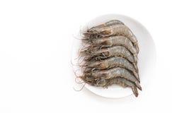 新鲜的虾/大虾 免版税库存照片