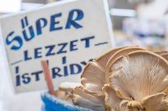 新鲜的蚝蘑用模糊的超级口味牡蛎在柜台标记后边在一个典型的蔬菜水果商义卖市场在土耳其 免版税库存图片