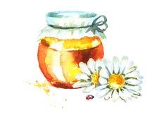 新鲜的蜂蜜和春黄菊 水彩手拉的例证 向量例证