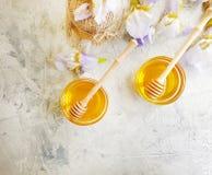 新鲜的蜂蜜虹膜花在具体背景桌夏天 库存图片