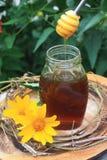 新鲜的蜂蜜 库存照片